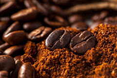 Close up picture of coffee beans Stock Image