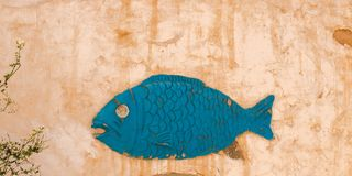 Close up picture of fish symbol on traditional berber house wall in Matmata, Tunisia royalty free stock images