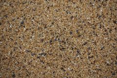 Close up of golden, black, and white sand grain stock photography