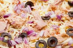 Homemade tuna pizza Stock Image