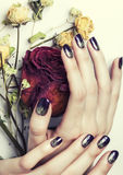 Close up picture of manicure nails with dry flower Stock Images