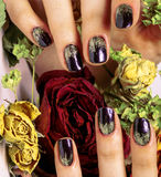 Close up picture of manicure nails with dry flower Stock Photos