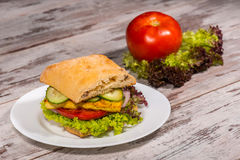 Close-up Picture Of Vegetarian Sandwich With Tofu Royalty Free Stock Images
