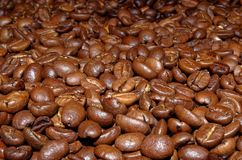 Roasted coffee beans as a background. Close up picture of roasted coffee beans as a background stock photography