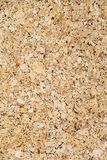 A close up picture surface of corkboard texture for background. Stock Photos