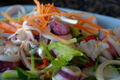 Close up picture of Thai spicy food, Yam Roum Mid Talay. The spicy squid salad Royalty Free Stock Photo