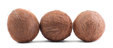 Close-up picture of three whole, fresh brown coconuts, isolated on a white background. Hawaiian coconuts. Three whole, fresh, organic brown fruits of coconuts Royalty Free Stock Photos
