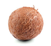 Close-up picture of tropical coconut, isolated on a white background. Fresh tasteful whole coco full of nutritious vitamins. Royalty Free Stock Photography