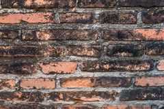 A pattern of line brick wall in ancient ruin. Royalty Free Stock Photo