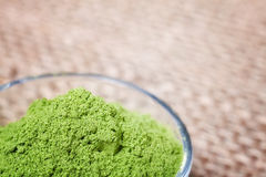 Close up picture of young barley powder in a bowl. Royalty Free Stock Photo