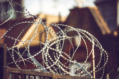 Close up piece of barbed wire Stock Photography