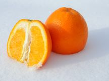 Close-up of pieces of cut orange in white snow Royalty Free Stock Photo