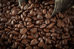 Close up pile of coffee bean pour out of the small silver tank Stock Photos