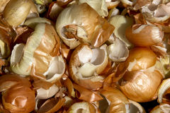 Close Up Pile of Discarded  Onion Peels Royalty Free Stock Photos