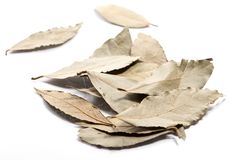 Close-up of pile of dry Bay leaves spice on white background stock photo