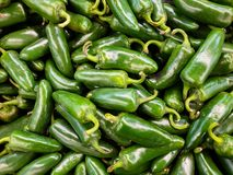 Jalapeno peppers. A close up of a pile of green jalapeno peppers stock photo