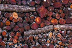 Close up from a pile of wood for fire in winter. Stock Photo