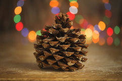 Close-up of pine cone. Bokeh lights on background. Royalty Free Stock Photos