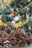 Close-up of pine cones, decorated Christmas tree in background stock photo