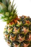 Close-up pineapple Stock Photography