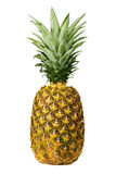 Close up of a pineapple Royalty Free Stock Image