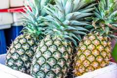 Close up pineapple at the market for sell Stock Image