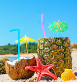 Close up of pineapples and coconuts by the shore Royalty Free Stock Photos