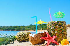 Close up of pineapples and coconuts by the shore Stock Images