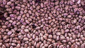 Close up pink beans background and as a texture. Healthy vegetarian dietary food rich in microelements. Healthy stock photos