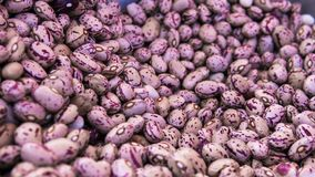 Close up pink beans background and as a texture. Healthy vegetarian dietary food rich in microelements. Healthy stock image