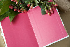 Close up pink blank page Royalty Free Stock Photos