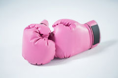 Close-up of pink boxing gloves. On white background Royalty Free Stock Photos