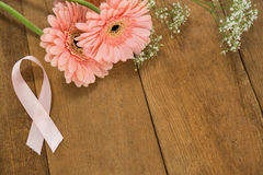 Close-up of pink Breast Cancer Awareness ribbon by gerbera flowers Stock Images