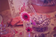 Close up of pink flower on table Stock Photos