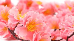 Close up of pink flowers. Close up of pink artificial flowers. Whole background Stock Photo