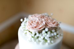 Close up of a pink icing fondant rose petals with babies breath stock photography