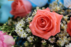 Close up of pink rose in bouquet.  Royalty Free Stock Photo