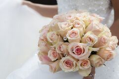 Close-up of Pink Rose Bouquet Stock Images