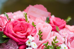 Close up of pink rose bouquet. Close up of bouquet of pink roses with white baby's breath Stock Photo