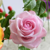 Close up of pink rose flower Royalty Free Stock Image
