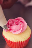 Close up of a pink rose frosted cupcake being iced Stock Photography