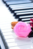 Close up of pink rose on the piano keyboard Royalty Free Stock Images