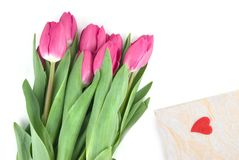 Close-up pink tulips with gift Royalty Free Stock Image