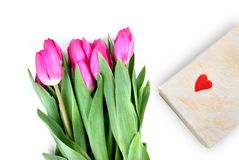 Close-up pink tulips with gift Royalty Free Stock Images
