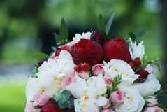 Close up of Pink and White Wedding Peonny and Roses Flowers with Eucalyptus Brunch stock image