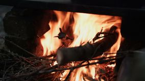 Close-up Plan, Dry Firewood Lit in Clay Stove stock footage