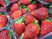 Baskets of strawberries Stock Photos