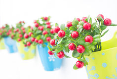 Close up Plastic Flowers With Colorful Plastic Vase. Stock Image