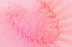 Close up plastic toilet brush in soft style Stock Photo
