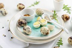 Hardboiled quail eggs with spices. Close up of a plate with boiled quail eggs served with spices Royalty Free Stock Photography
